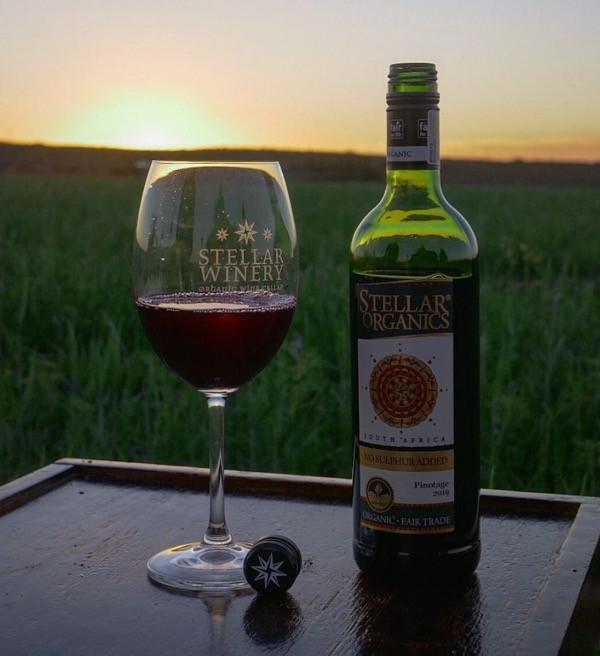 """""""Die sulfit-freien Weine, insbesondere der Pinotage von der Stellar Winery sind aktuell der Hit"""" bei Best-of-Bioweine.de"""
