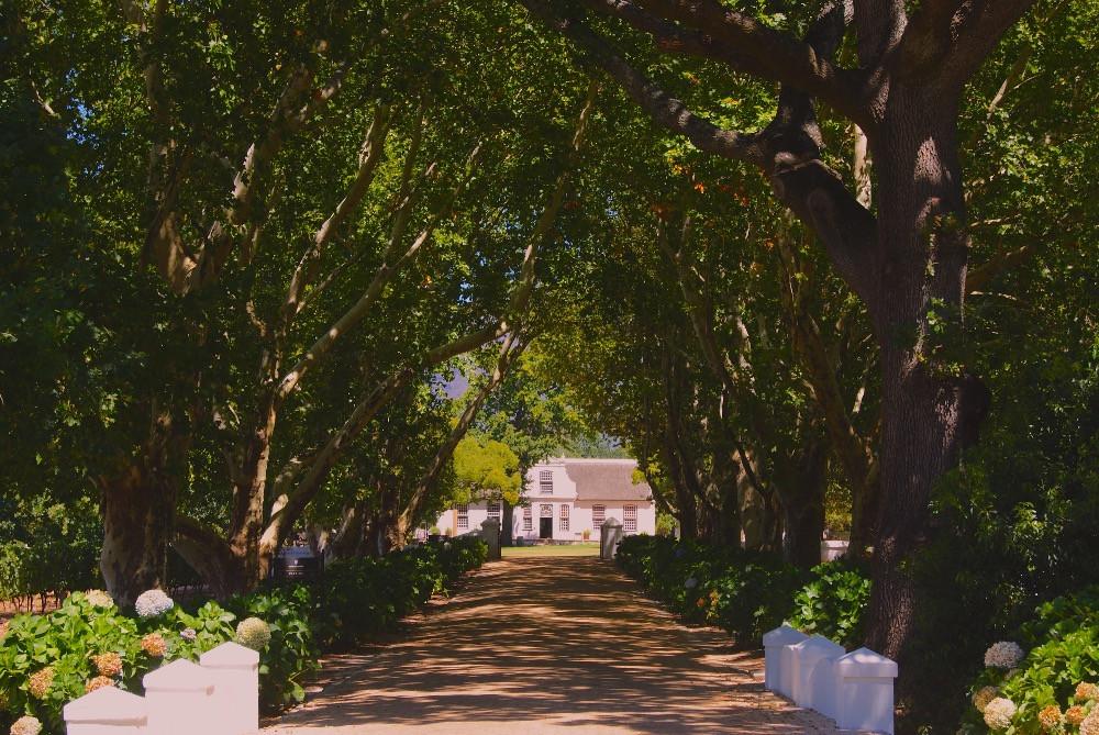 Romantisches Weingut bei Kapstadt