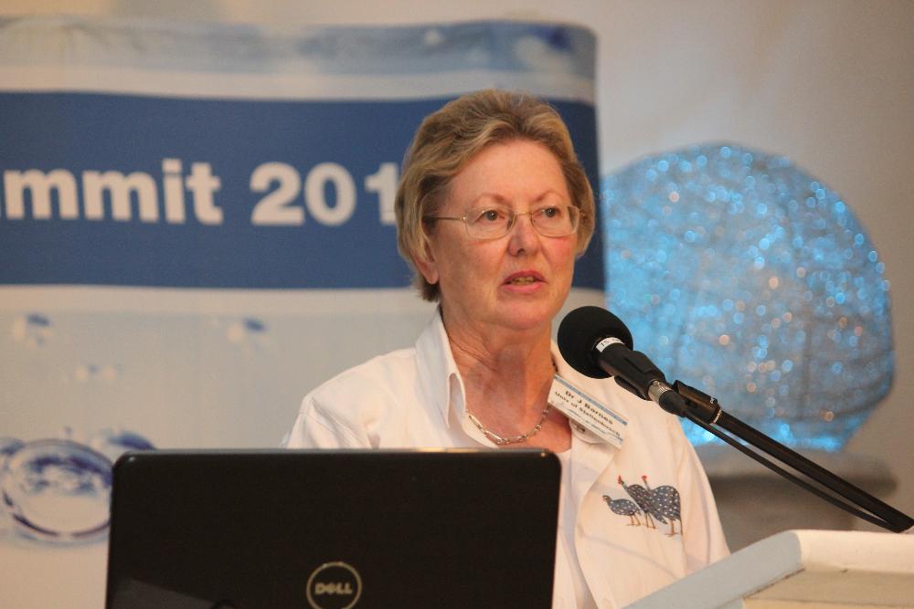 Dr. Jo Barnes forscht seit 1998 an Wasserverschmutzung.