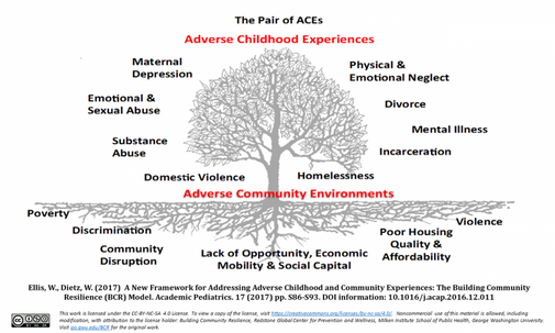 ACES tree.png
