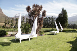 wedding planner cape town gay couple