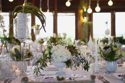 safari cape town wedding planner w