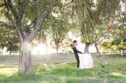 weddings in cape town