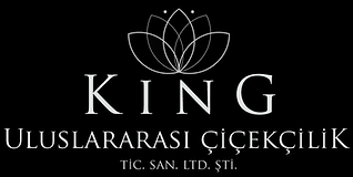 2_Renksiz_marka_son_Logo_King_ltd._şti.