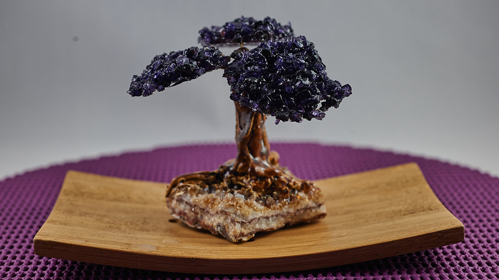 Natural Amethyst Money Tree with Petrified Wood ABT00005
