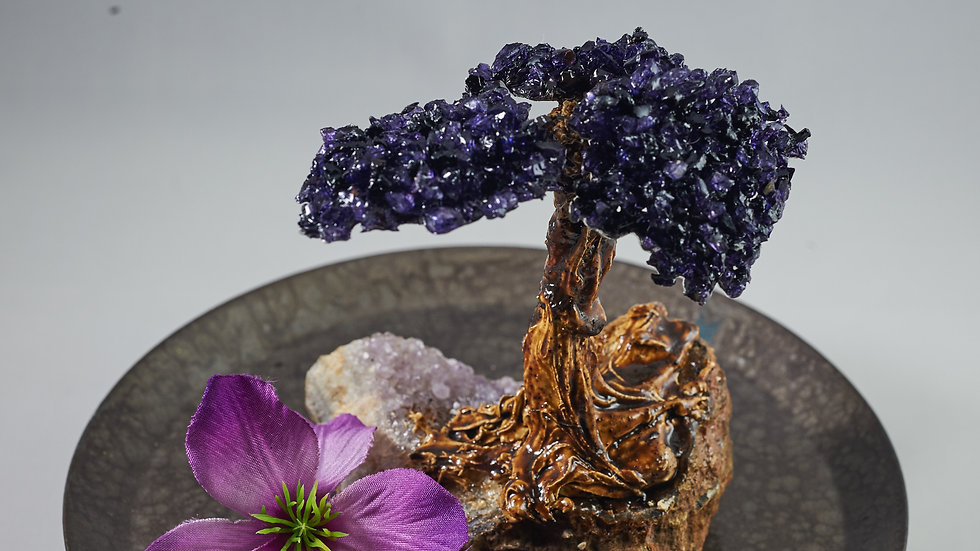 Natural Amethyst Bonsai Tree with Petrified Wood ABT00009