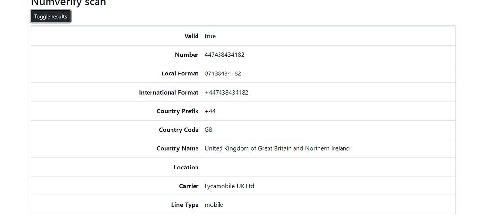 PhoneInfoga Web Interface