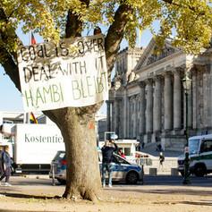 Baumbesetzung am Deutschen Bundestag für Aufmerksamkeit für den Hambacher Forst