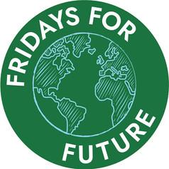 Organisation einer Reihe Workshops für Fridays for Future