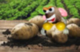 Potato final 2.jpg
