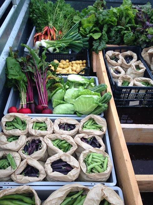 Legumes marché de treffort