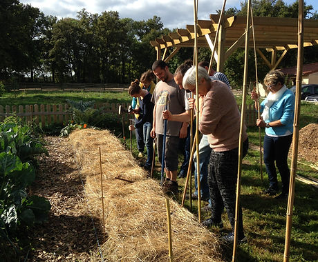 Formation permaculture ain