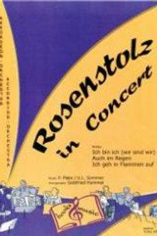 Rosenstolz in Concert