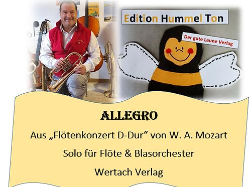 """Allegro aus """"Flötenkonzert"""" von Mozart"""