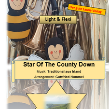The Star of Younty Dawn - Sehr leichte Musik aus Irland