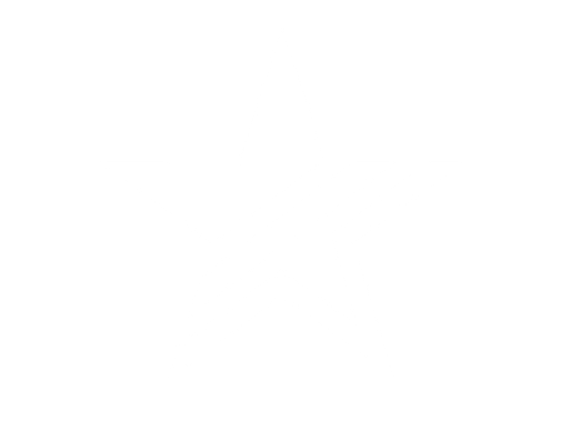 StarIconWHITE_edited.png