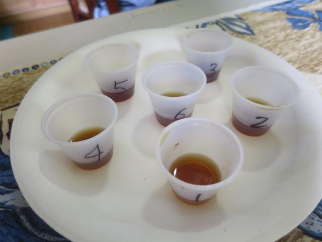6種類のカッピング用のコーヒー