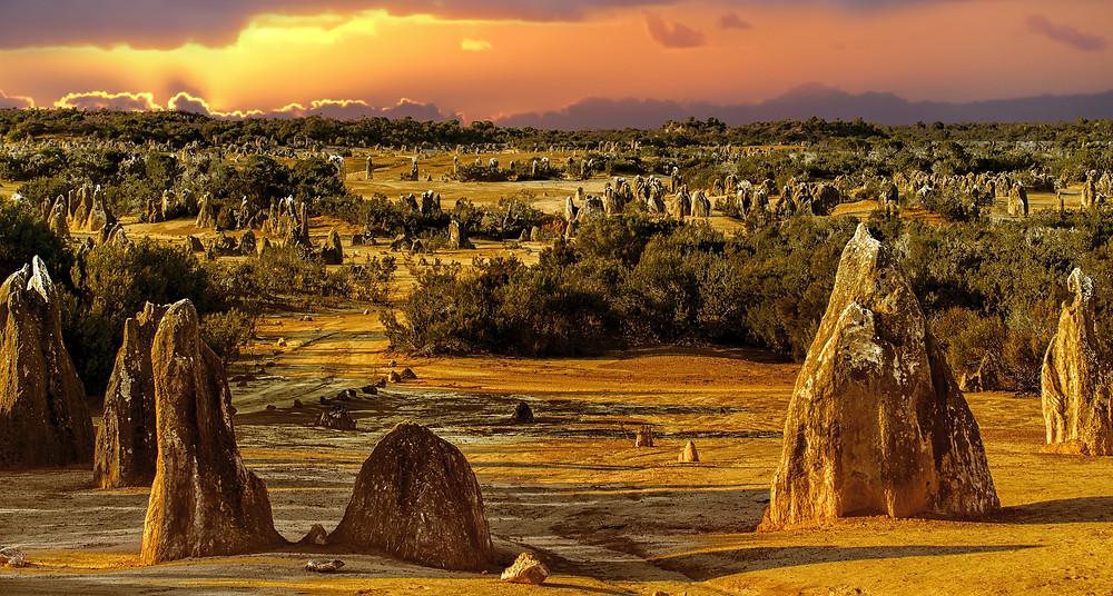 sunny australian outback
