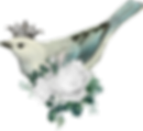 crowned-bird_white_dove.png