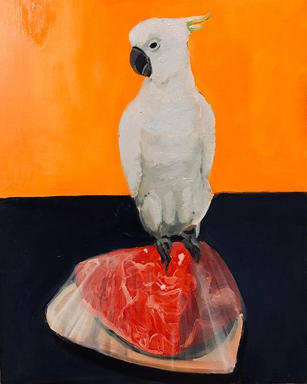 MEAT BIRD.JPG