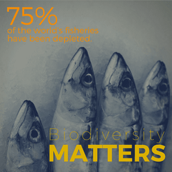 Биоразнообразие имеет значение