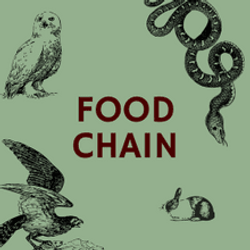 Пищевая цепочка: поиск связей
