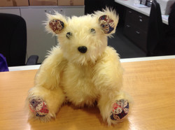 Year 10 Teddy Bear with contrasts