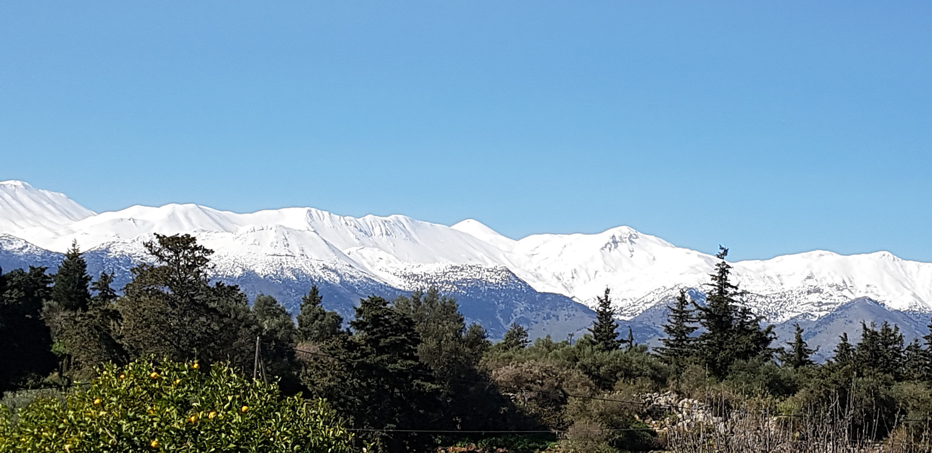 View to Whinte Mountains.jpg