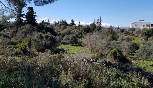 Interior views - Verden countryside and