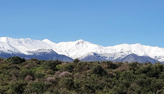 View to White Mountains.jpg