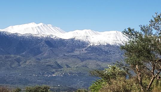 Views to the White Mountains.jpg