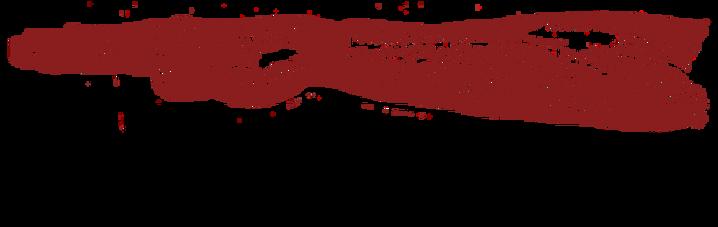vigor_logo_new_transparente_NEGATIVO_cóp