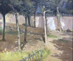 Corner of Forest