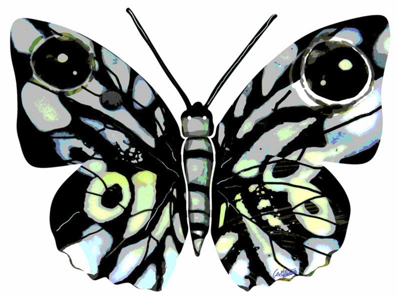 David Gerstein - Butterfly Naomi
