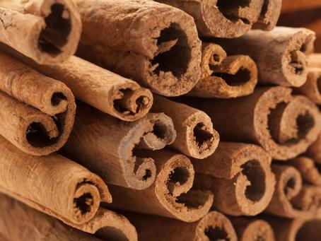 Cassia Bark: Aromatic Bark