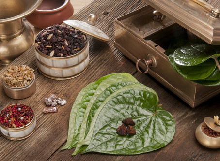 Betel Paan - The Chewing Leaf