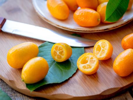 The Kumquat: A Symbol of Good Luck