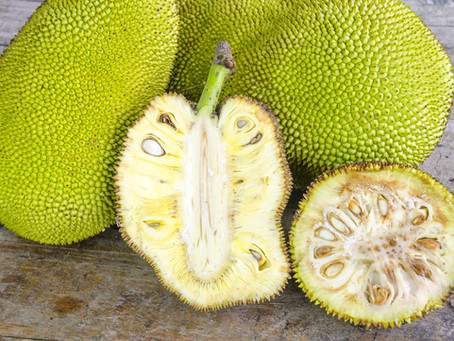 Jackfruit - The Miracle Fruit