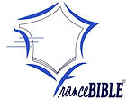logo BLEU ELECTRIQUE.jpg