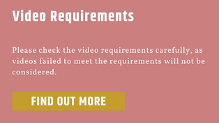 video requirements 2.png