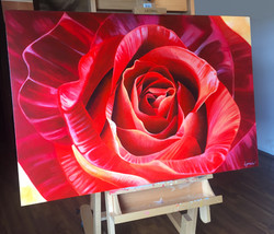 rose in studio