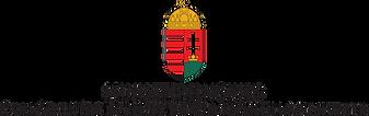 CSFTNM_logo-1.png