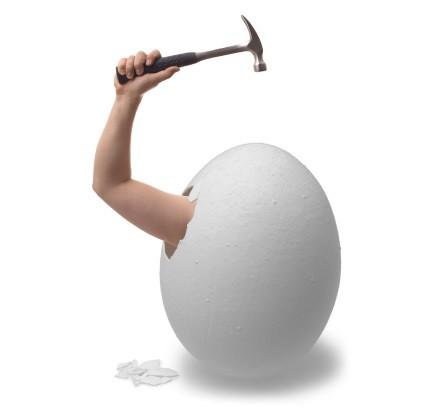 ¿ Te atreves a salir del huevo?