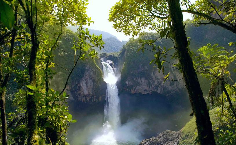 Amazonas del Brasil