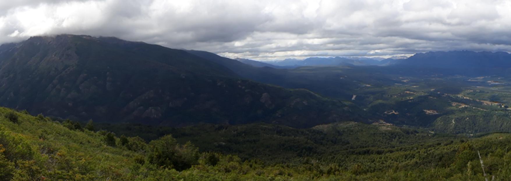Panoramica-natacion.jpg