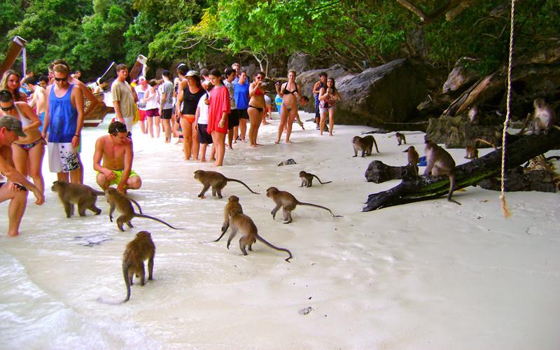 Monkey Island Krabi