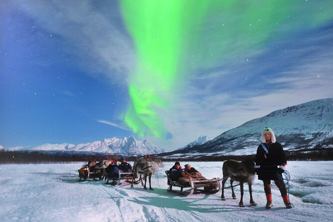Tromso Trineo