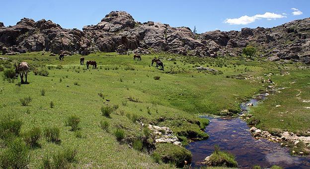 Kuntur Huaca