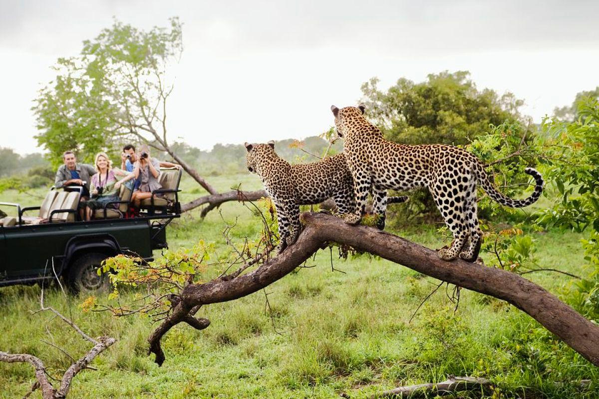Sudafrica Parque