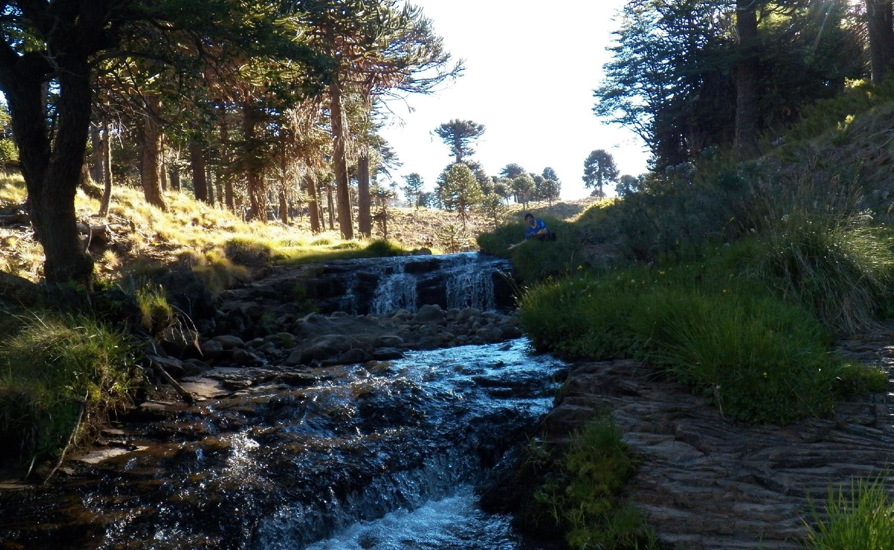 Cascada del Agrio.jpg